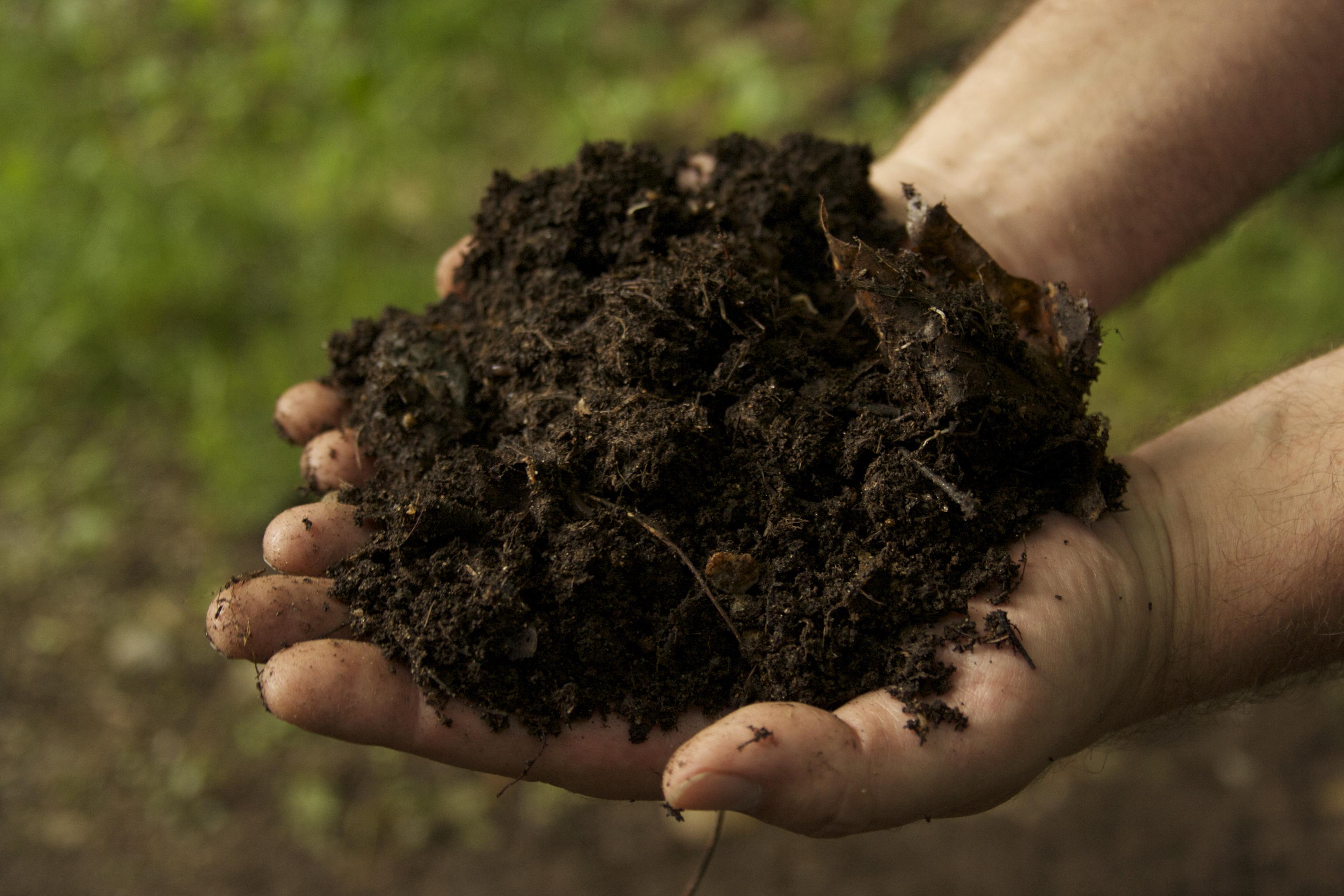 15-compost-hands